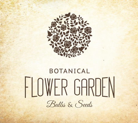 chik: Rose garden bush black silhouette over old paper background. Vector illustration. Illustration