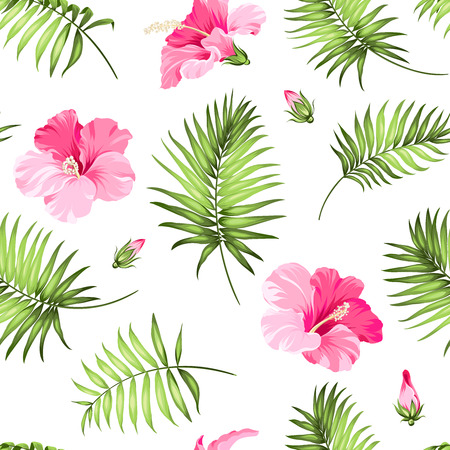 fiori di ibisco: Tropical seamless.