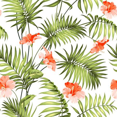 De tak van een palmboom. Stock Illustratie