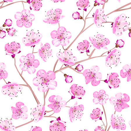 nature image: Spring flowers wallpaper over white background.