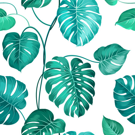 palm leaf: Topical palm leaves over white, seamless pattern. Vector illustration.