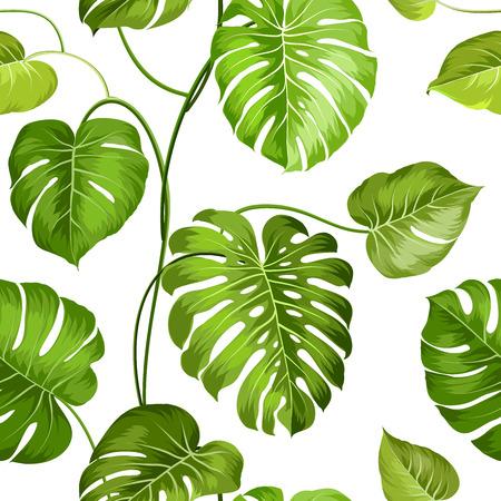 flores exoticas: Palma tópico deja en blanco, sin patrón. Ilustración del vector.