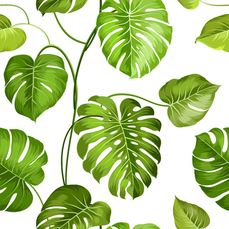 monstera: Topical palm leaves over white, seamless pattern. Vector illustration.