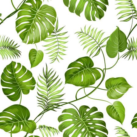 hojas parra: Hojas tropicales diseñan para muestra de la tela. Ilustración del vector.