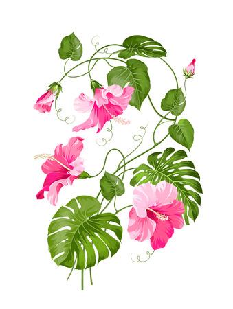 열 대 꽃 화환 흰색 배경 위에 절연입니다. 벡터 일러스트 레이 션.