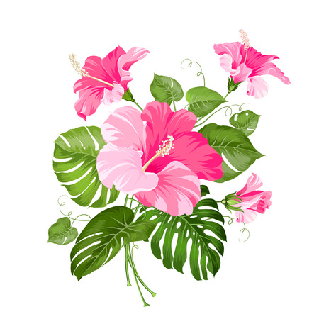 beautiful red hibiscus flower: Tropical flower garland isolated over white background. Vector illustration.