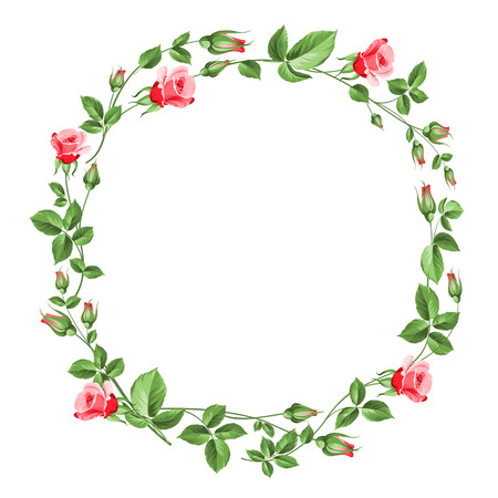 Rose wreath isolated on white. Vector illustration.
