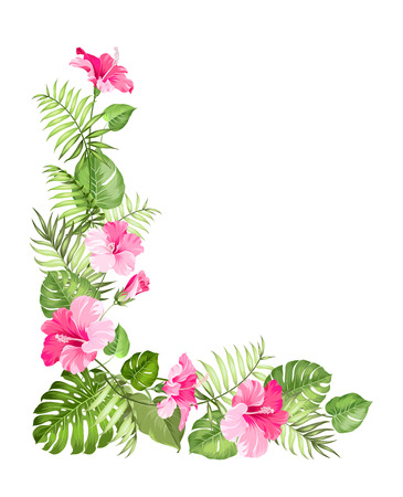 tropical flower: Tropical flower garland isolated over white background. Vector illustration.