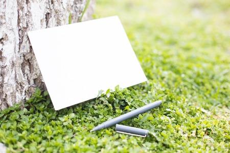 papel de notas: Documento en blanco sobre la hierba verde sobre árbol viejo. Foto de archivo