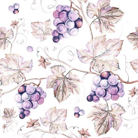 포도 나무 원활한 배경입니다. 이전 스타일 세피아 배경. 수채화 그림 스톡 콘텐츠 - 41997747