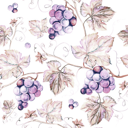 grapes on vine: Vine seamless background. Old style sepia background. Watercolor illustration