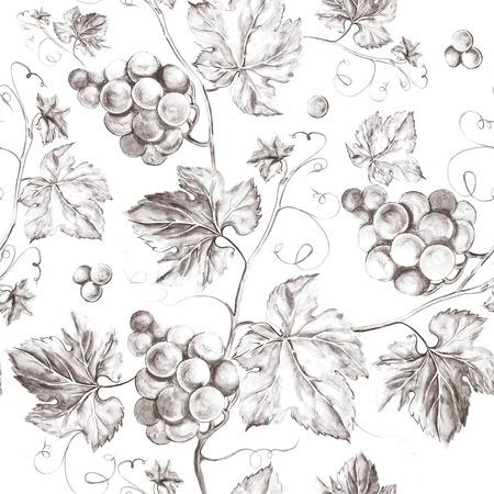 포도 나무 원활한 배경입니다. 이전 스타일 세피아 배경. 수채화 그림 스톡 콘텐츠
