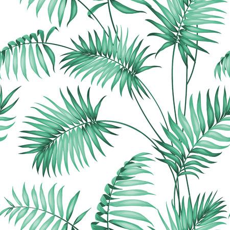 palmeras: Palma tópico deja en modelo inconsútil. Ilustración del vector. Vectores