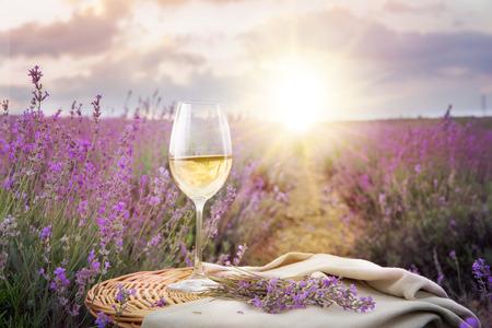 fragrant: Bottle of wine against lavender landscape in sunset rays.