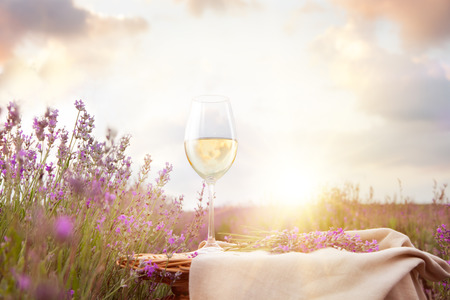 herb: Bottle of wine against lavender landscape in sunset rays.