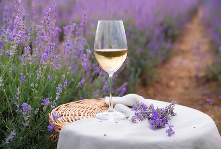 Wine glass against lavender landscape in sunset rays.