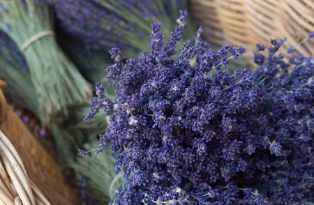 french: Bunch of lavender flowers on wicker basket. Lavender souvenirs in eco friendly packaging. Photographed in Provence region.