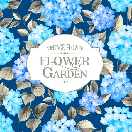 eleganz: Hortensien. Vintage-Rahmen. Blaue Blumen. Illustration