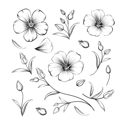 Collection of sakura flowers, set. Cherry blossom bundle. Black flowers of sakura isolated over white. Flowers contours collection. Vector illustration. Ilustracja