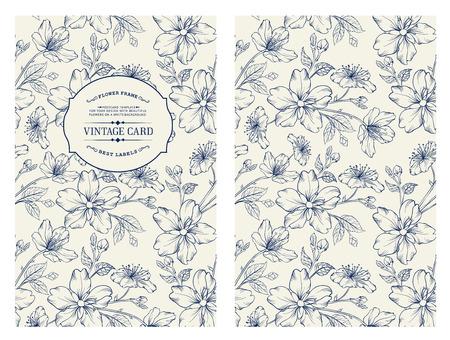 flor de sakura: Cubra diseño para usted portada personal. Vectores