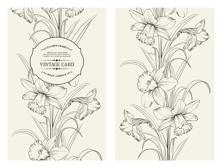 Daffodil flower or narcissus isolated on white. Seamless pattern with flowers narcissus. Vector illustration.