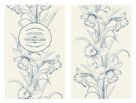 daffodil: Daffodil flower or narcissus isolated on white. Seamless pattern with flowers narcissus. Vector illustration.