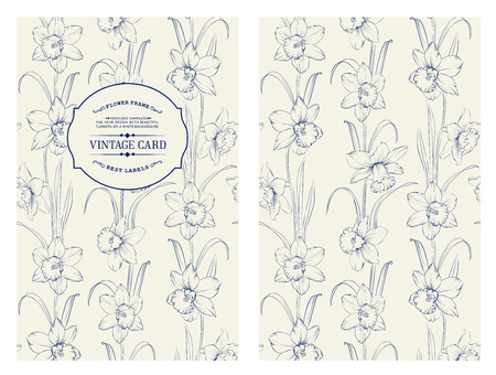 daffodil: Daffodil flower or narcissus isolated on gray. Floral pattern with narcissus. Blue lines over gray background. Vector illustration. Illustration