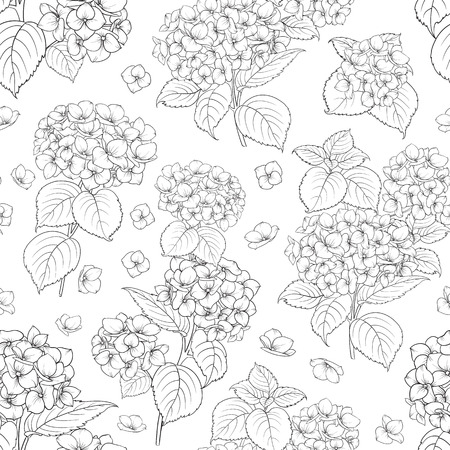 Flower pattern of hydrangea flowers. Seamless texture over white background for your design. Vector illustration
