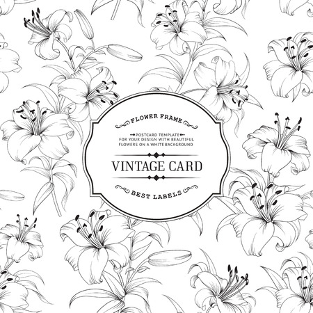 lily: Vintage label card. Invitation card template for your holiday. Vector illustration.