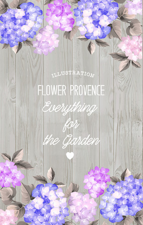 flower blooming: Beautiful purple flower of hydrangea. Wedding Card and engagement announcement.  Invitation card template with orange blooming hydrangea over gray background. Vector illustration.