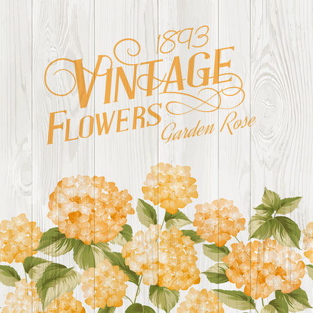 Flower garland of orange hydrangea flowers over wooden panel. Illustration of flowers. Vintage art. Can be used for invitation card. Orange flowers. Vector illustration.