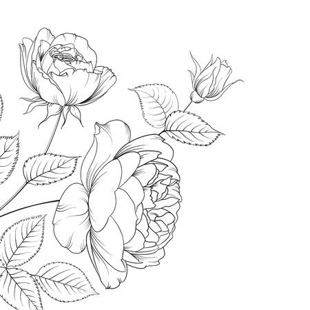 白い背景で隔離のバラの花束。バラの花束。花は白に対して分離されました。色の花の美しいセットです。  イラスト・ベクター素材