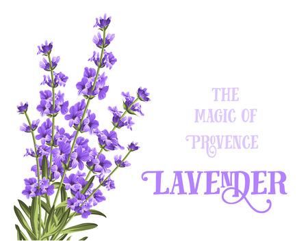 De lavendel elegante kaart met frame van bloemen en tekst. Lavendel krans voor uw tekst presentatie. Label zeep pakket. Label met lavendel bloemen. Stock Illustratie