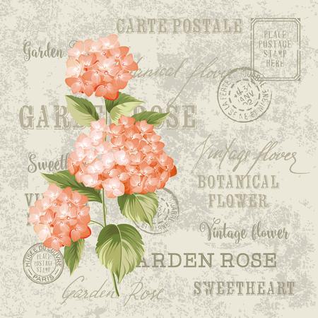 葡萄收穫期: 紅色的花朵設計invtation名片模板。婚禮邀請復古明信片背景矢量模板。與霍滕西亞花的標籤。