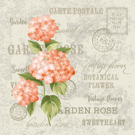 Red flowers design for invtation card template. Vintage postcard background vector template for wedding invitation. Label with hortensia flowers. Stock Photo