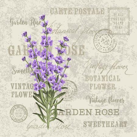 ラベンダーのエレガントなカード。結婚式招待状のヴィンテージはがき背景ベクトル テンプレートです。ラベンダーの花とラベルを付けます。