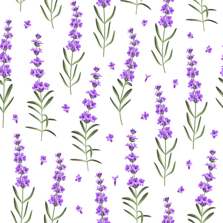 Seamless pattern of lavender flowers on a white background. Watercolor pattern with Lavender for fabric swatch. Vector illustration.