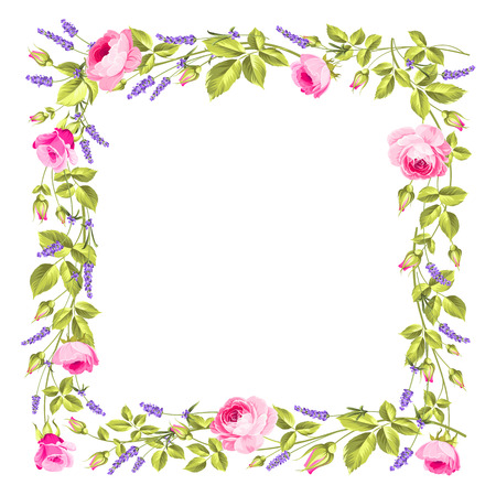 흰색 배경 위에 빈티지 장미와 라벤더 프레임입니다. 로즈와 라벤더. 꽃 프로방스의 꽃입니다. 벡터 일러스트 레이 션.