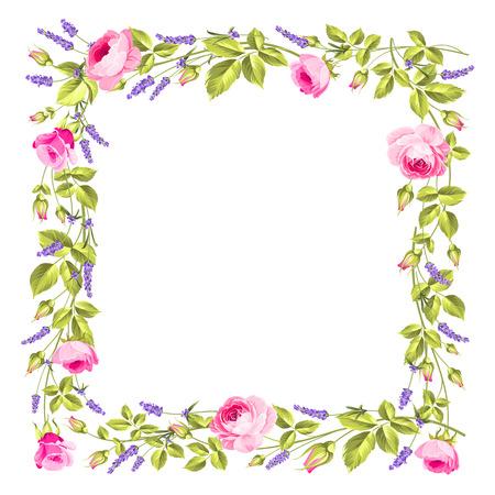 Vintage rose and lavender frame over white background. Rose and Lavender. Blossom provence flower. Vector illustration.