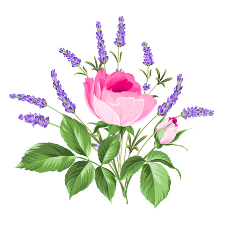 vintage rose: Single rose card. Gentle vintage card with hand drawn floral wreath in watercolor style - fragrant lavender.