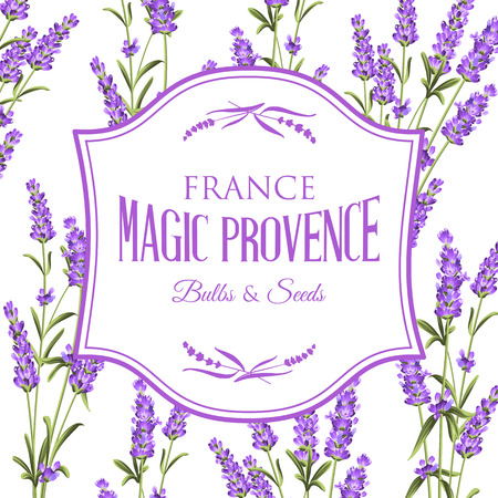 Frame of lavender flowers on a white background. Label of soap package. Label with lavender flowers. Vector illustration. Ilustracja