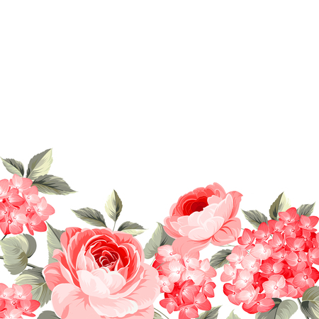 Luxurious vintage frame of color flower. Red flowers isolated over white backround. Vector illustration.