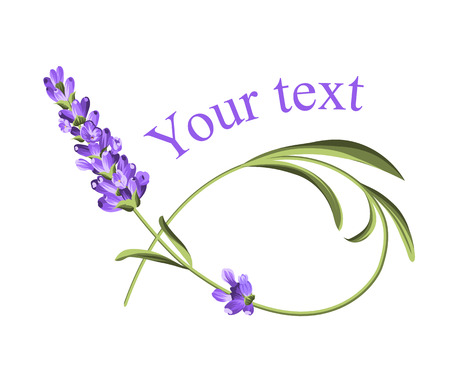 Your text template. Frame of lavender flower in watercolor paint style. The lavender elegant card with flower and text. Lavender for your text presentation. Vector illustration.