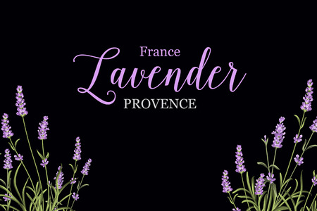 package printing: Lavender sign label. Bunch of lavender flowers on a black background. Label of soap package. Lavender card for paper, label and other printing or web projects. Vector illustration.