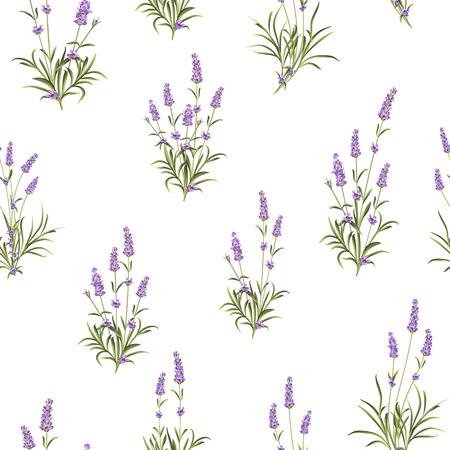 The Lavender Naadloos patroon. Bosje lavendel bloemen op een witte achtergrond. Vector illustratie. Stock Illustratie