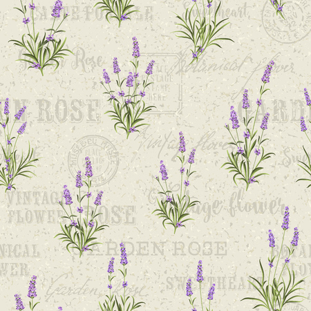 La linea di cornice senza soluzione di continuità di lavanda. Mazzo di fiori di lavanda su uno sfondo bianco. Illustrazione vettoriale.