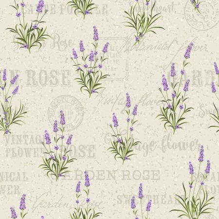 The Lavender Seamless Rahmenlinie. Bunch von Lavendel Blumen auf weißem Hintergrund. Vektor-Illustration.