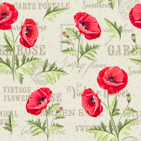 poppy pattern: Pattern of poppy flowers on a white background. Backdrop of postal stamps and postmarks, gray background. Vector illustration. Illustration