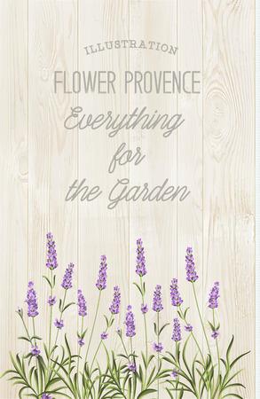 La carte élégante de lavande avec bouquet de fleurs et texte. Lavande guirlande pour votre présentation du texte. Étiquette du paquet de savon. Étiquette avec une texture en bois.