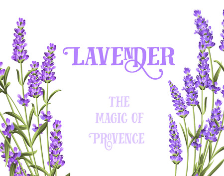 The lavender elegant card with frame of flowers and text. Lavender garland for your text presentation. Label of soap package. Label with lavender flowers. 免版税图像 - 52528949